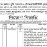 Bangladesh Institute of Research and Training on Applied Nutrition Job Circular